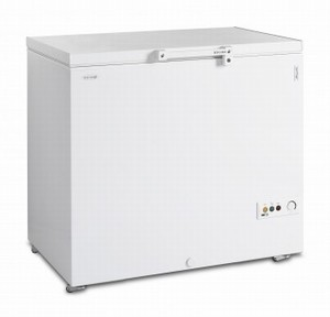 Скриня морозильна TEFCOLD FR305