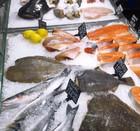 Рыбный магазин - FreshFish - MARGUS - Маргус. Льдогенератор. Лед для рыбы, льдогенератор Брема.